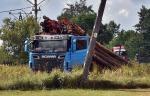 Ciężarówka z drewnem wypadła z drogi