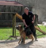 Policyjny pies wytropił włamywacza