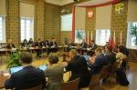 W Dużym Opolu będzie 29 rad dzielnic