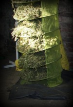 Ponad 5 kg marihuany na posesji w Kędzierzynie-Koźlu