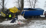 Ciężarówka uderzyła w drzewo, kierowca ciężko ranny