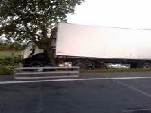 Ciężarówka zjechała z drogi i uderzyła w drzewo
