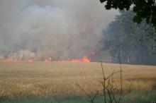 Płoną zboża i lasy na Opolszczyźnie
