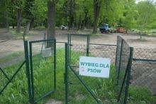 Miał być wybieg dla psów - jest poniemiecki cmentarz?