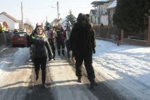 W Opolu-Winowie od rana trwa tradycyjne wodzenie niedźwiedzia