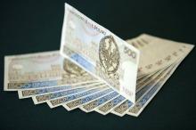 <i>(fot. Narodowy Bank Polski / nbp.pl)</i>
