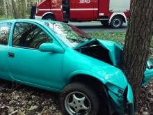 Kierował autem po spożyciu alkoholu, uderzył w drzewo