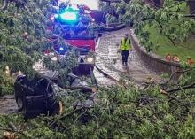 Drzewo spadło na samochód w Brzegu. Dwie osoby ranne