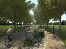 Na Wyspie Bolko powstanie park z tysiącami roślin