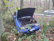 Nie opanował pojazdu i wjechał do lasu