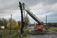 Orkan Grzegorz szaleje nad Opolszczyzną. Strażacy interweniowali ponad 200 razy.