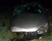 Uderzył w drzewo, porzucił samochód, dostał 20 złotych mandatu i stracił prawo jazdy