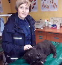 Dzielnicowa z Prudnika uratowała rannego psa