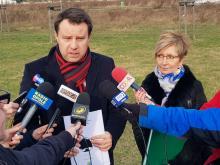 W Opolu przybędzie 7000 drzew. Zadba o nie miejski dendrolog