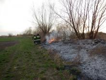 Strażacy średnio co pół godziny wyjeżdżają do pożaru traw