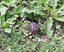 Do sklepu wszedł z odbezpieczonym granatem, myślał, że to zabawka