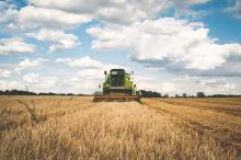 Problematyczna sytuacja opolskich rolników -  żniwa