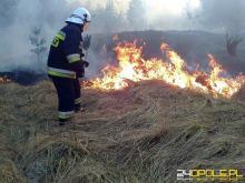 Ryzyko pożarów podczas upałów jest wielkie, a najczęściej powodują go...ludzie