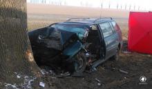 67-latek zasłabł za kierownicą i zginął uderzając w drzewo