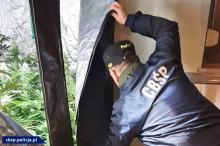 Opolskie CBŚP walczy z przestępczością narkotykową w całym kraju