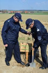 Sto dębów na 100. rocznicę powstania Policji Państwowej