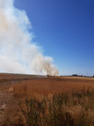 Trwa dogaszanie pożaru zboża przy obwodnicy północnej w Opolu