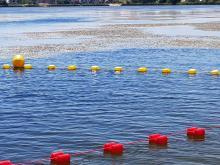 """Kąpielisko Malina porasta moczarka, ale zniknie. W """"najbliższej przyszłości"""""""