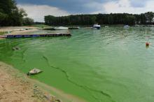 Dwa jeziora, skrajne jakości wody. Dlaczego duże jezioro w Turawie umiera?