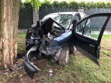 Renault Scenic wjechał w drzewo na ulicy Wilsona. Kierujący nietrzeźwy