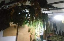 Blisko 8 kilogramów narkotyków trzymał w mieszkaniu, działce, garażu