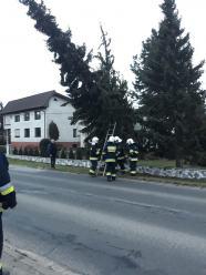 Przewrócona linia energetyczna śmiertelnie poraziła 16 krów w powiecie krapkowickim