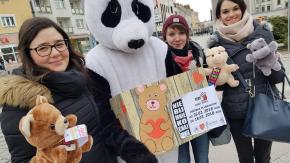 Studenci rozdawali pluszaki, by zwrócić uwagę na problem bicia dzieci