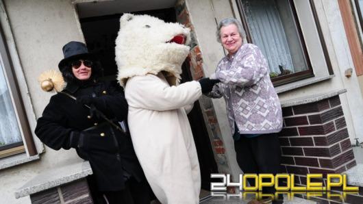 W Starych Siołkowicach grasuje niedźwiedź