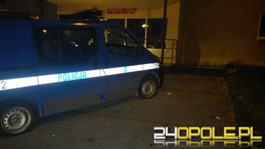 Pijany nastolatek zdemolował policyjny radiowóz