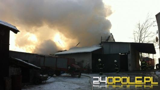 Świnie spłonęły podczas pożaru stodoły