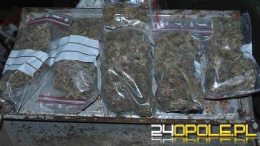 28-letni diler narkotykowy trafił do aresztu