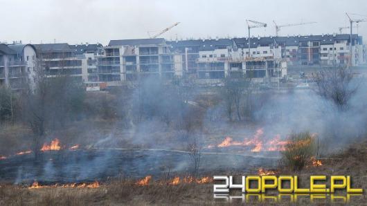 Pożary traw wciąż zmorą strażaków
