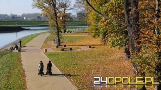 Długi weekend w Opolu - złota, polska jesień
