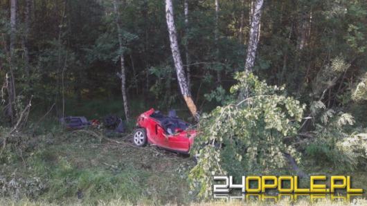 Pijany kierowca podczas wyprzedzania uderzył w drzewo