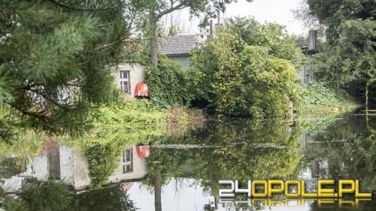 Woda ze stawów zalewa posesje na Kolonii Gosławickiej