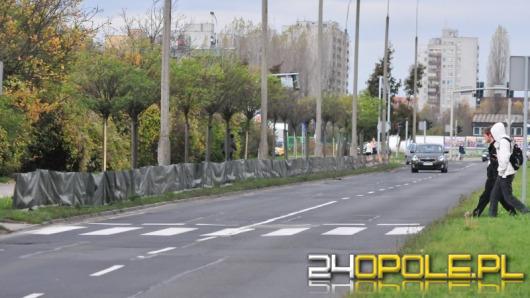 Specjalne osłony ochronią zieleń miejską przed solą