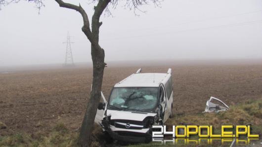 12 osób rannych po zderzeniu busa z samochodem osobowym