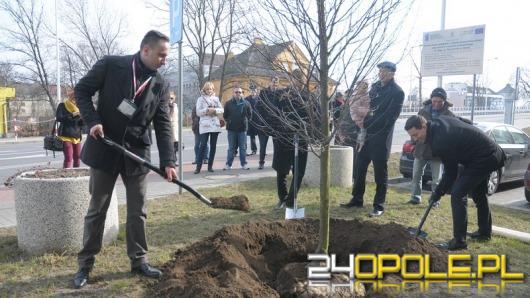 W Opolu zasadzono Drzewo Pamięci Żołnierzy Wyklętych