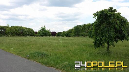 """Czytelnicy pytają: """"Dlaczego nikt nie kosi traw w parku na osiedlu AK?"""""""