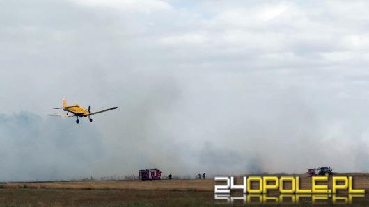Ogromny pożar pod Łubnianami. Płonie ponad 200 hektarów traw.
