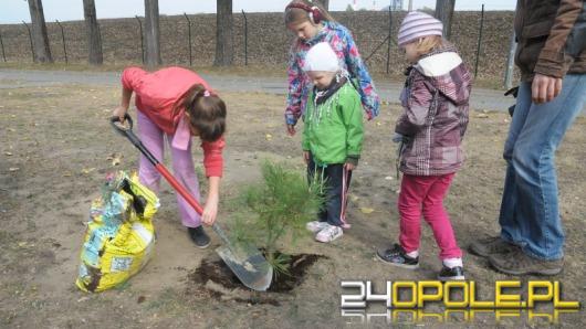 Przedszkolaki i uczniowie sadzili drzewa w siedzibie WiK