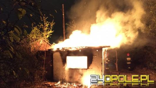 Spłonęła altanka na działkach przy ul. Łokietka