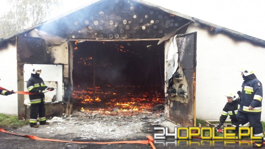 26 tysięcy piskląt spłonęło w pożarze kurnika