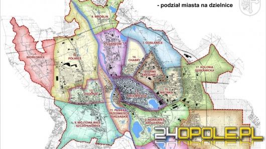 Całe Opole będzie miało Rady Dzielnic?