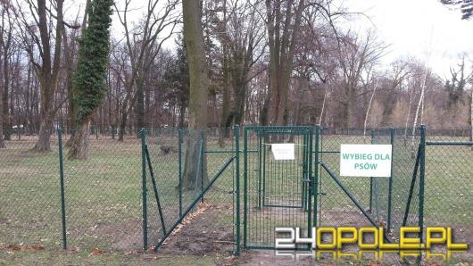 Psi park w Opolu będzie ponownie otwarty dopiero wiosną